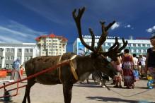 Китайские вузы подключатся к арктическим исследованиям